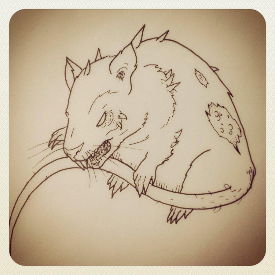 Drawn rat dire On by dickmagnet rat dickmagnet