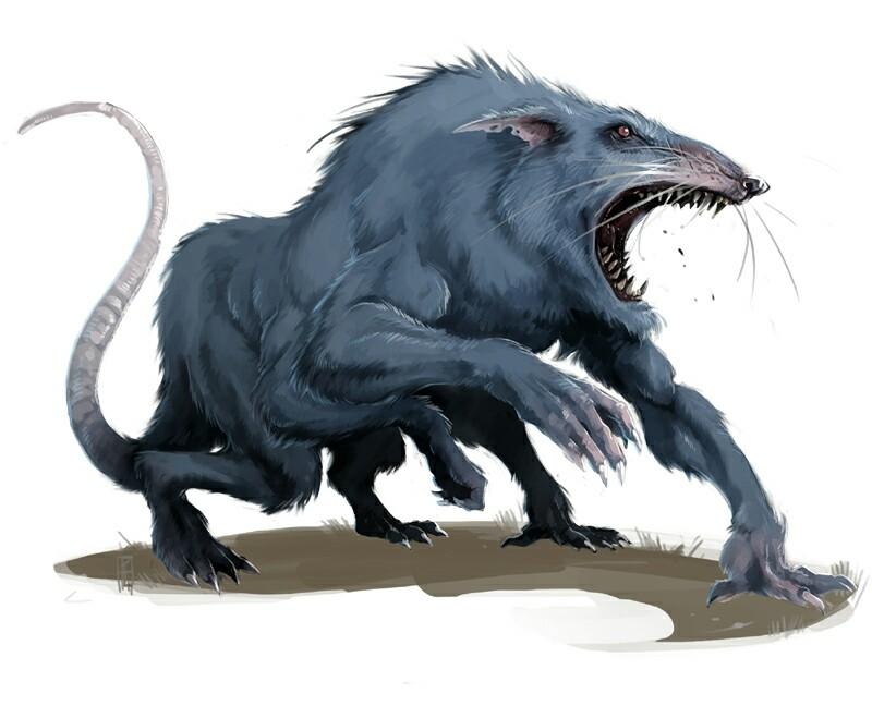 Drawn rat dire DND Pathfinder PFRPG Rat fantasy
