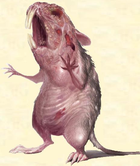 Drawn rat diseased Rats Rats and Rat