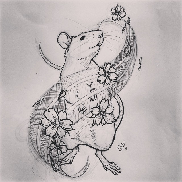 Drawn rat doodle #tattoo South like in Jersey?