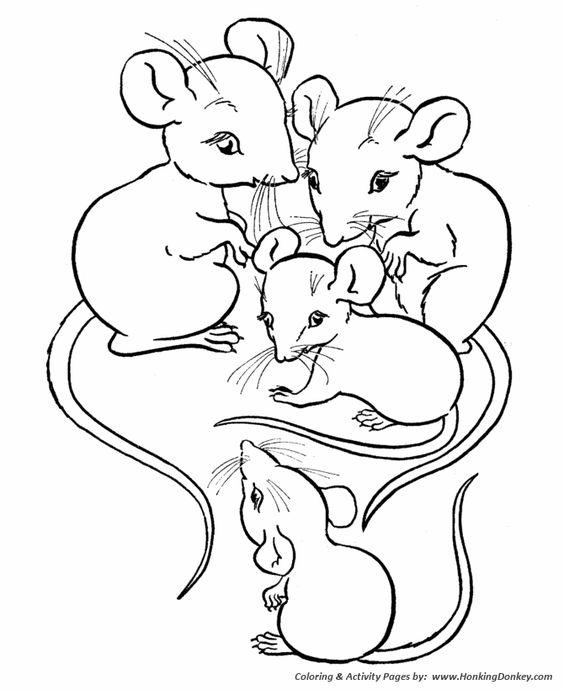 Drawn rat farm animal Coloring coloring animal page