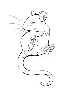 Drawn rat headed To and on Ratty Find