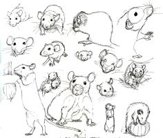 Drawn rat impossible Mor Practice s nEVEr 10