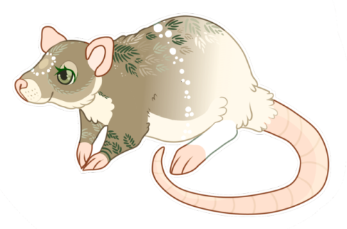 Drawn rat impossible Drawn 5ever adoption havent reveal!