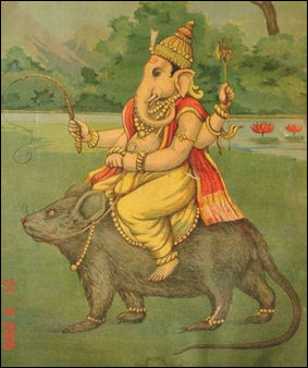 Drawn rat indian HISTORY ITS Facts RELIGION HINDUISM