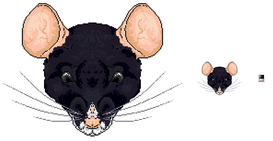Drawn rat rat head By by Head Imkihca Rat