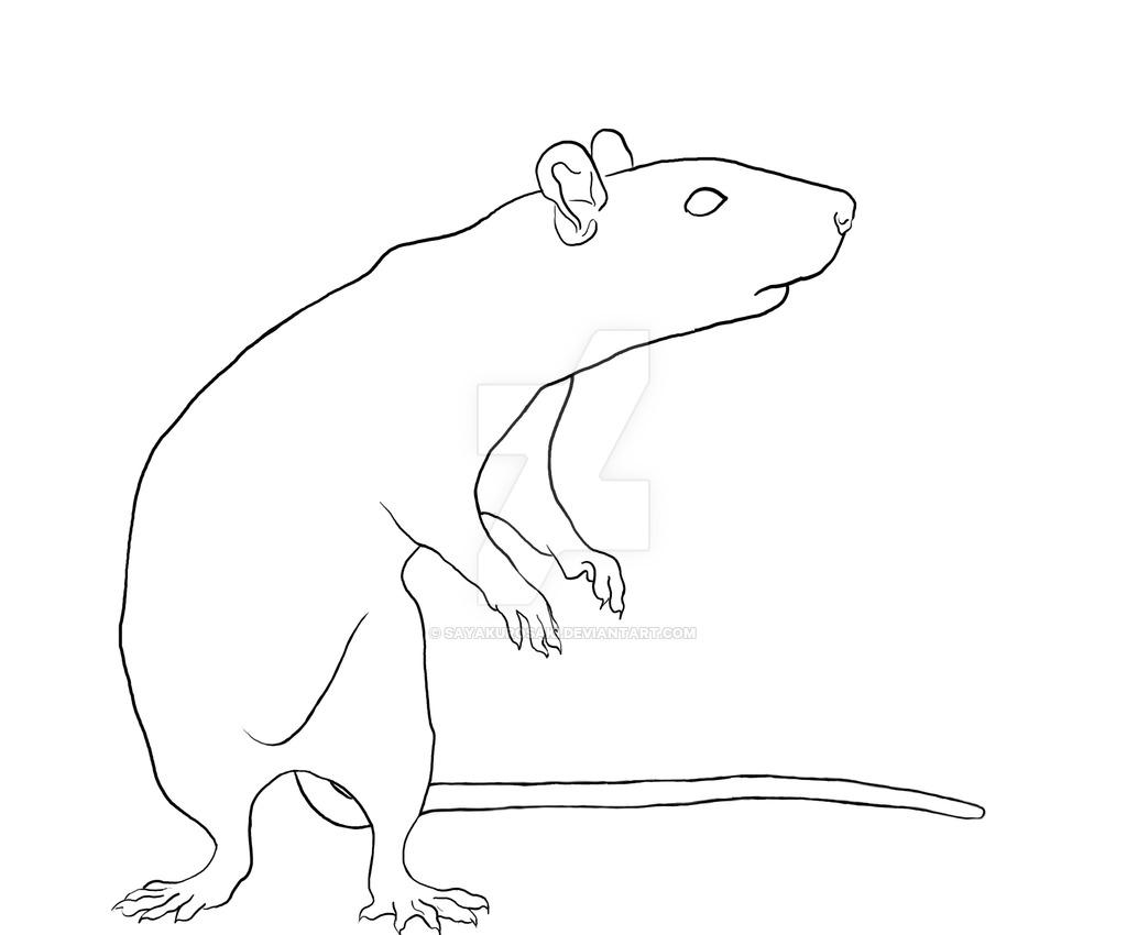 Drawn rat rat line By SayaKurosaki SayaKurosaki Standing rat