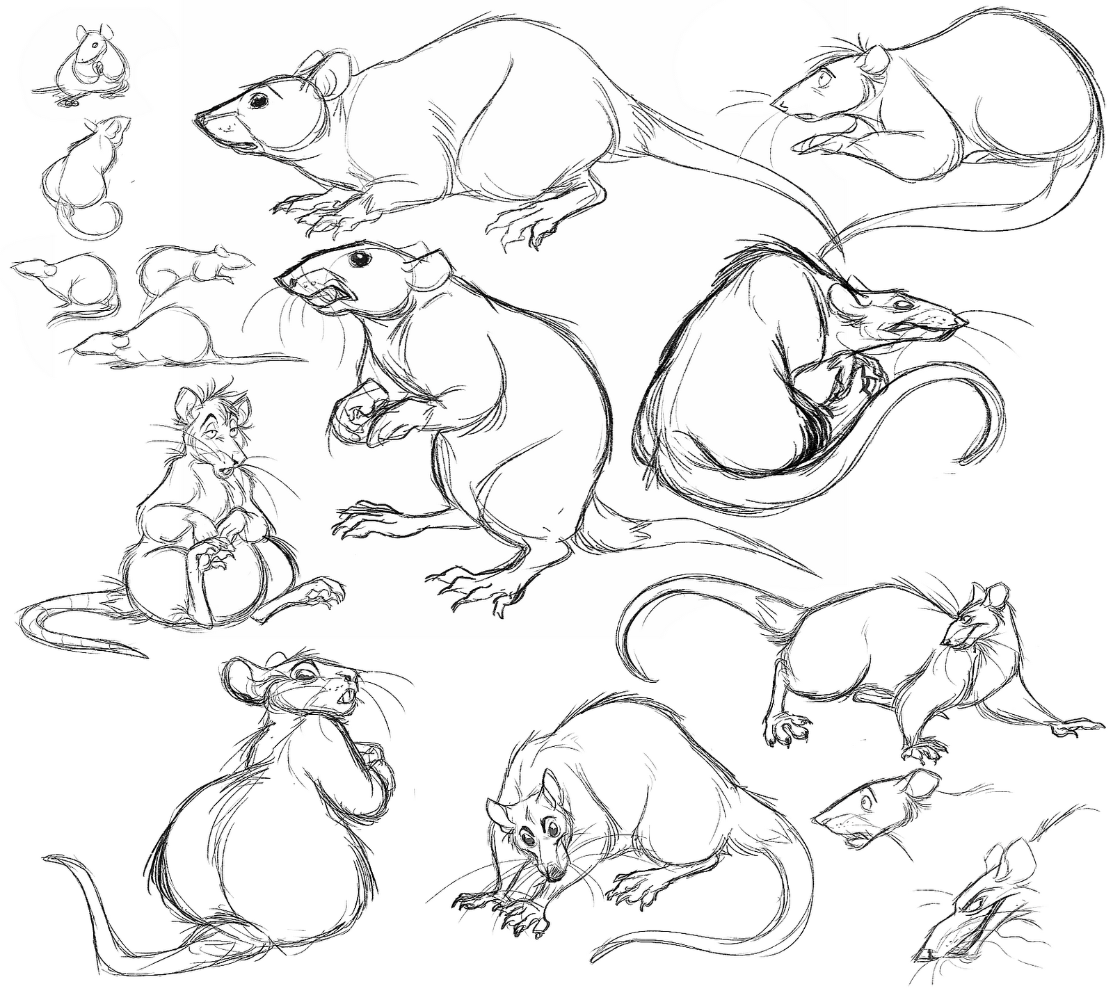 Drawn rat sketch Emone drawing drawing rats Emone