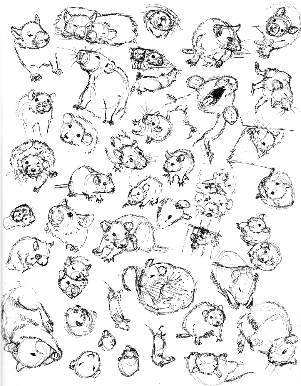 Drawn rat sketch By nEVEr Pictures) a Sketch