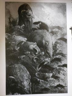 Drawn rat swarm Vermin  Swarm Rat Fantasy: