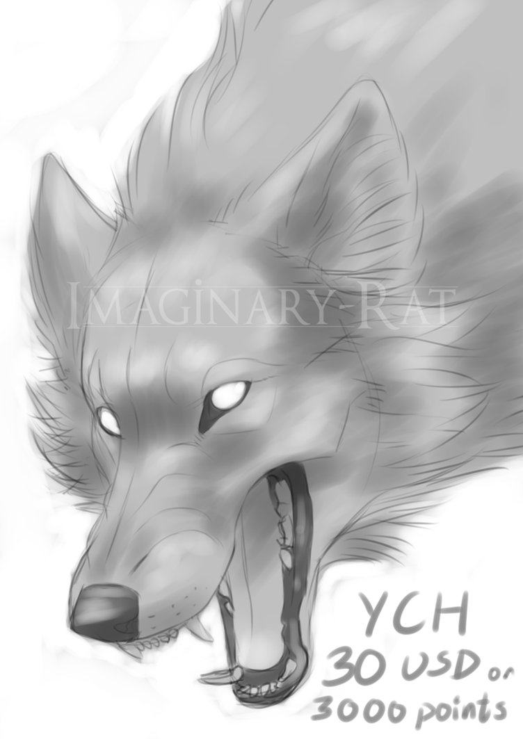 Drawn rat vicious Wolf by wolf by on