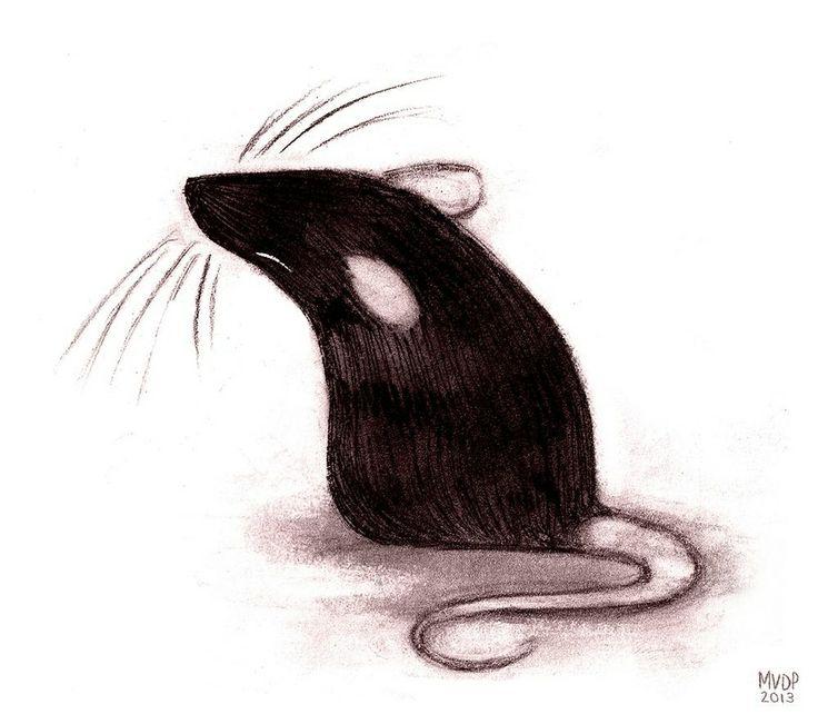 Drawn rat vomit By RATS! Pinterest LOVE Der