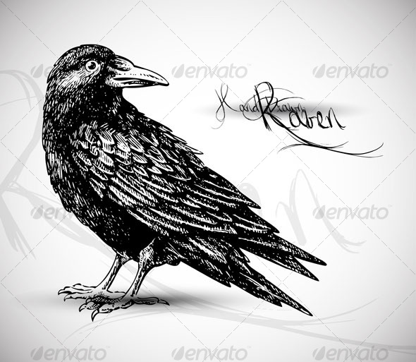 Drawn raven Hand drawn by silvertiger GraphicRiver