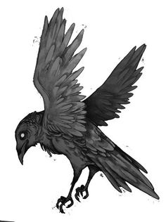 Drawn raven Find raven tattoo Google with
