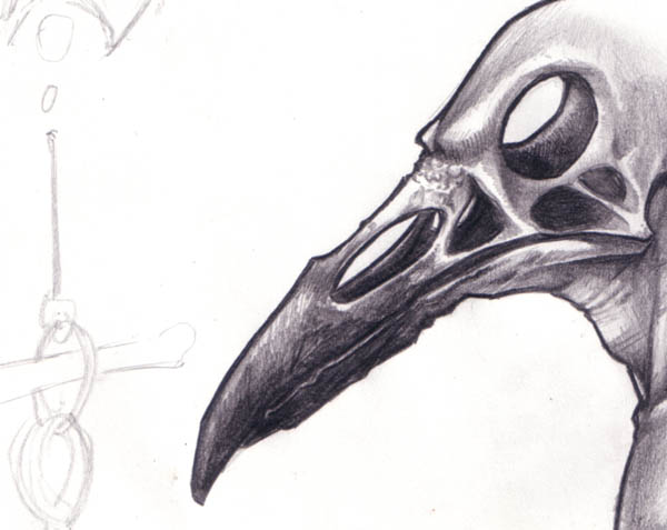 Drawn raven anatomy Girl raven  wearing drawing