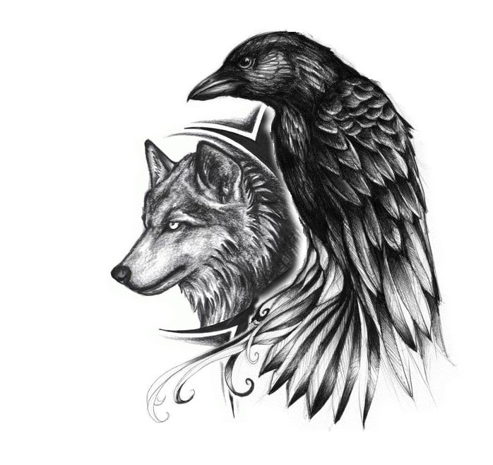 Drawn raven angry Tattoo wolf and Wolf Ideas