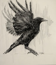 Drawn raven angry Drawing ONLINE ARTISTS' LINKS Fahmi