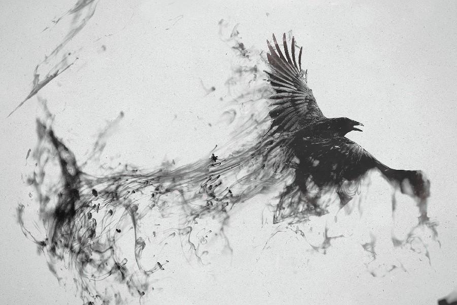 Drawn raven art deco Raven lots Raven Art Popular
