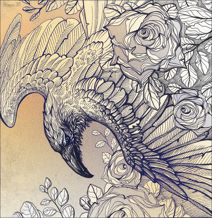Drawn raven artistic Roses @DeviantArt best deviantart on