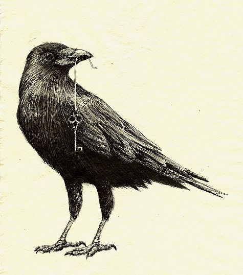 Drawn raven artistic Pin best images on Ravens