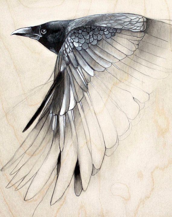 Drawn raven artistic Art best about art Pinterest
