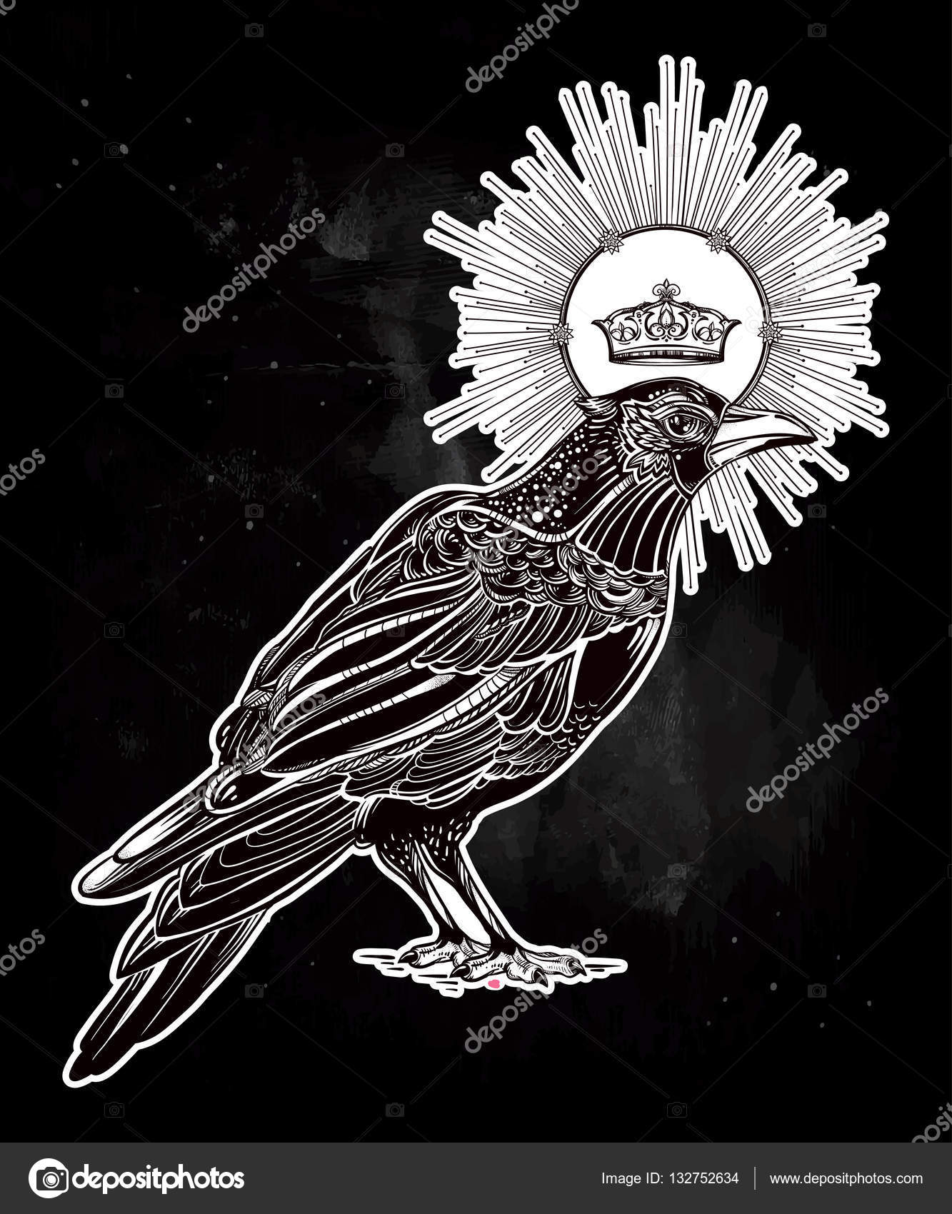 Drawn raven black and white With medieval hand spirituality Vector