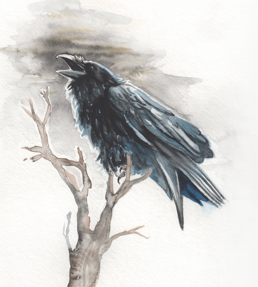 Drawn raven black raven Amaranth44 DeviantArt Raven by Amaranth44