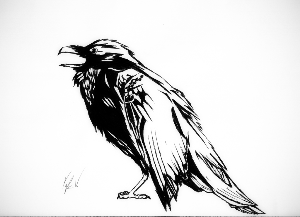 Drawn raven black raven Marker and DeviantArt Pen by