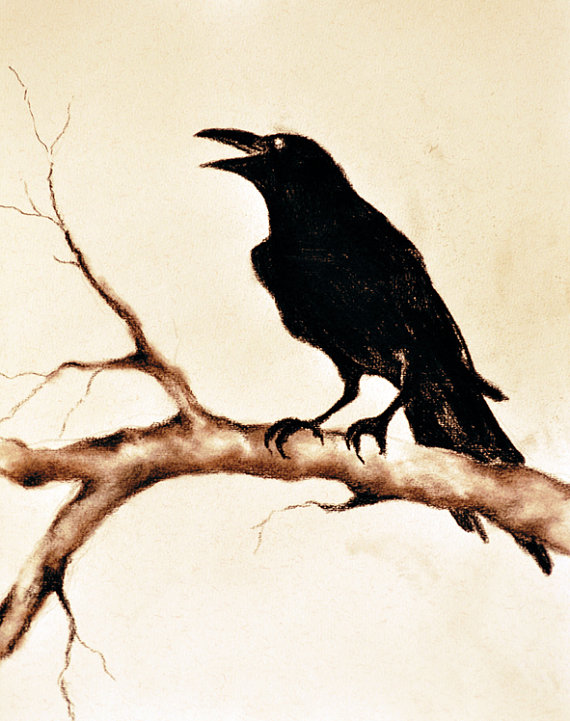 Drawn raven black raven Charcoal original Natureandart 95x12 drawing