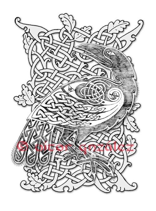 Drawn raven celtic By twistedstrokes deviantart on @deviantART