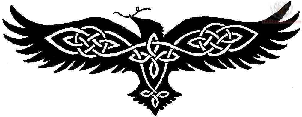 Drawn raven celtic Tribal Symbols  Raven