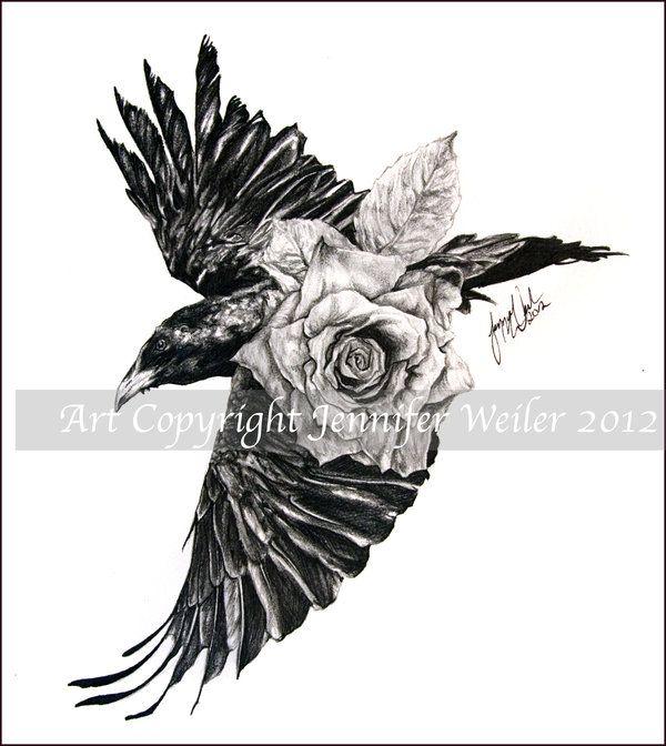 Drawn raven celtic On Pinterest com 51 yellocake