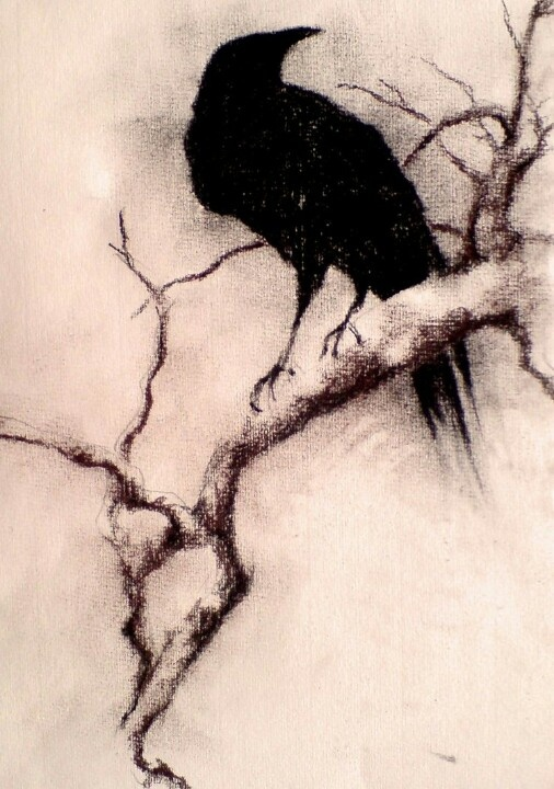 Drawn raven charcoal Source where/who the Charcoal on