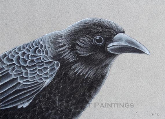 Drawn raven charcoal Art Drawing Charcoal  Crow