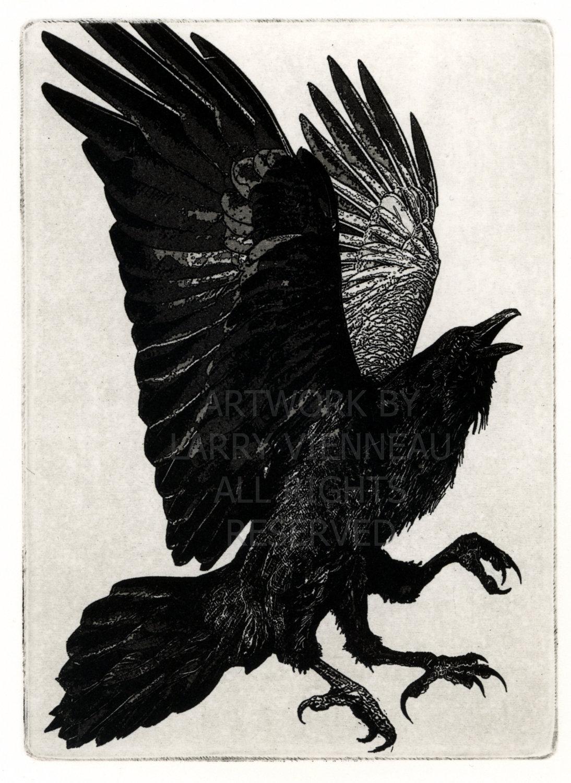 Drawn raven crow beak Google Search drawing Best drawing