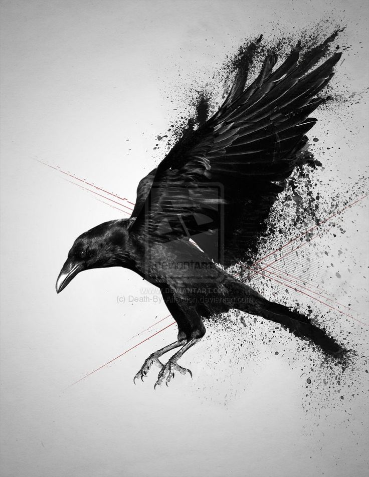 Drawn raven dead 19 ben on kwok best