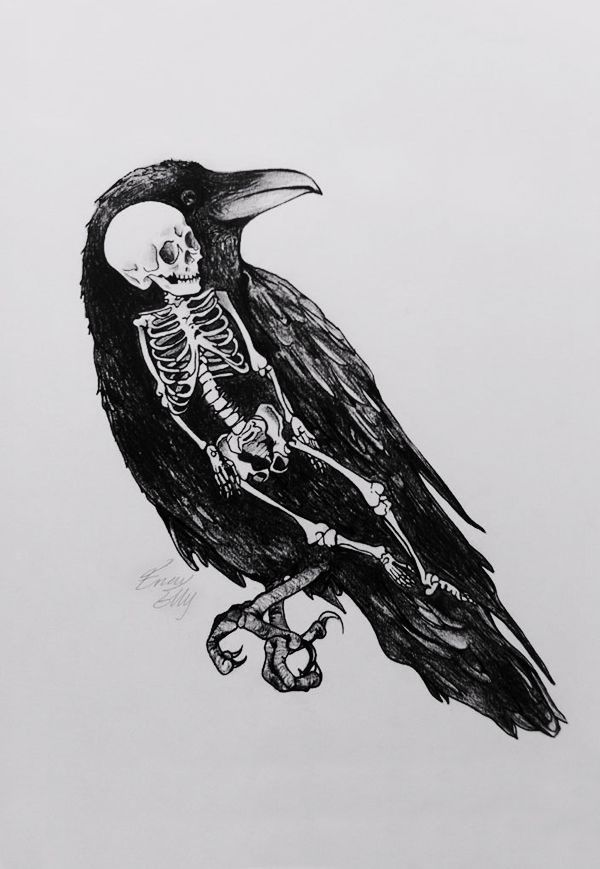 Drawn raven dead Dead #dead #bird images on