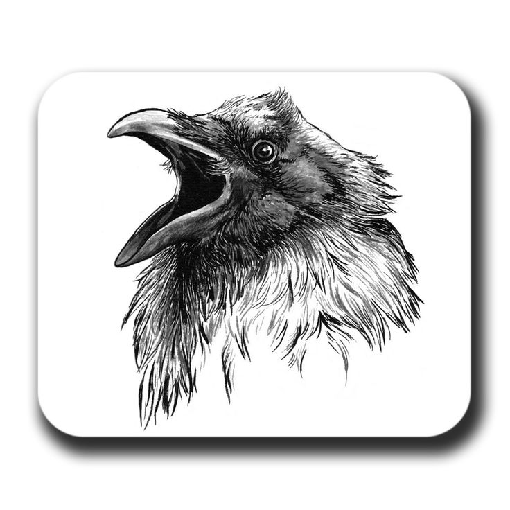 Drawn raven face By Cawing on crows Bird