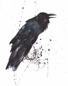Drawn raven gothic Cionn in Raven Fios Print