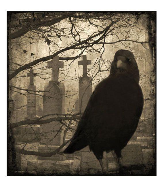 Drawn raven gothic Best Eerie Print Gothic Blackbird
