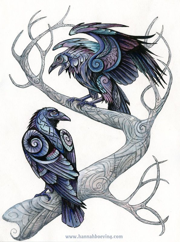 Drawn raven graphic Paper) Pinterest on ravens colored