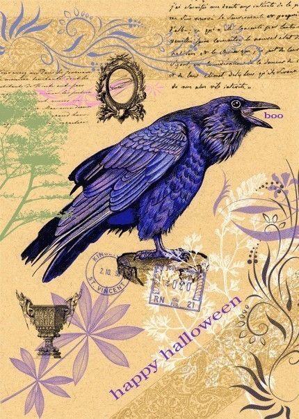 Drawn raven halloween 5 Blackbird Card 72 7