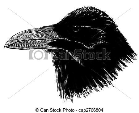 Drawn raven head  Illustrations Raven Art Clip