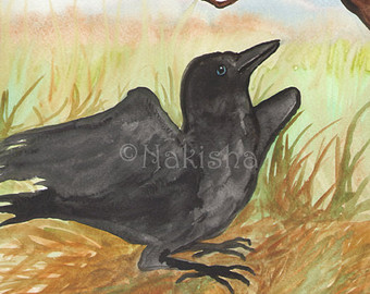 Drawn raven hippie chick Original Crow The Forest Chick