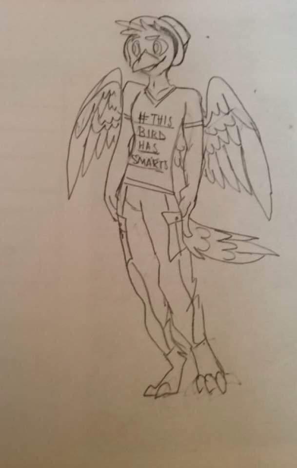 Drawn raven humanoid Amino Furry Humanoid/Furry/Animatronic/Raven! Humanoid Art