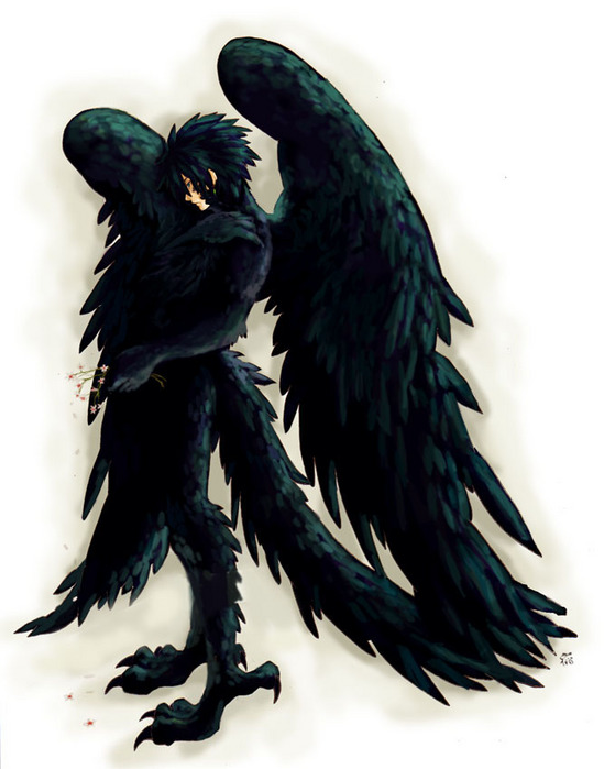 Drawn raven humanoid CLOSED/MOVED View topic Avians Smoothie