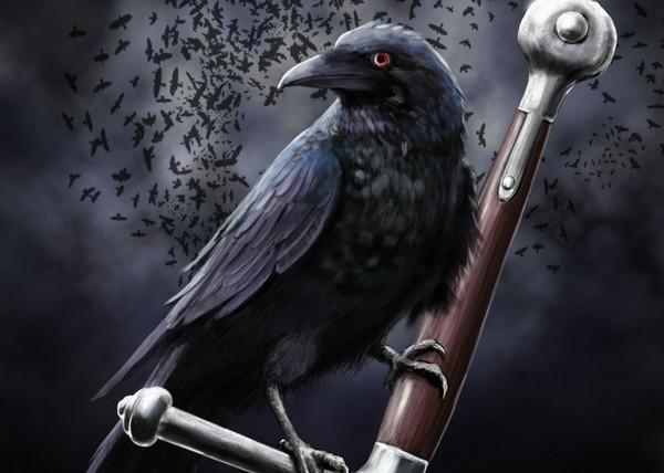 Drawn raven illustration Crow GameOfThrones raven #drawing images
