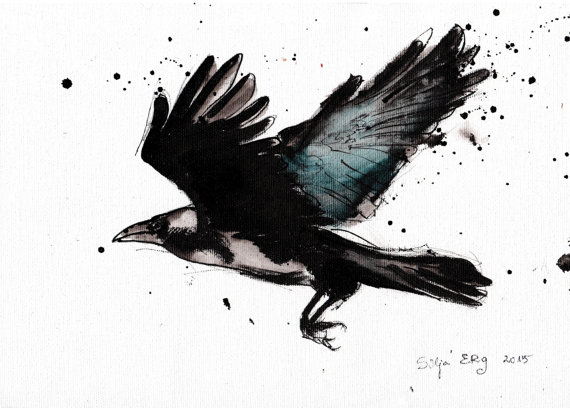 Drawn raven ink splatter Feathers drawing A4 canvas splatter