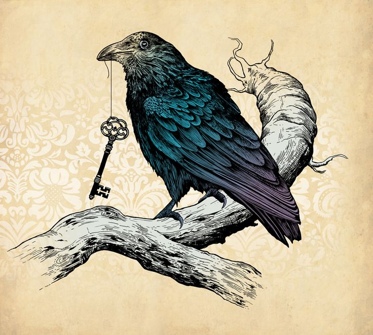 Drawn raven key Images Raven more Pinterest on