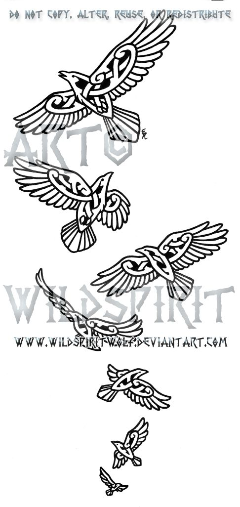 Drawn raven knotwork WildSpiritWolf Seven Pinterest knotwork on